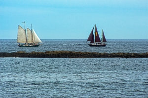 sailboats-approaching1-sfp