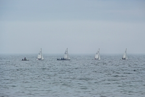 sailboats2-sfp