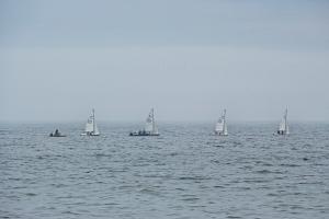 sailboats2-sfp
