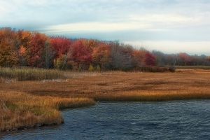 wellsriver-autumn-afternoon_v2